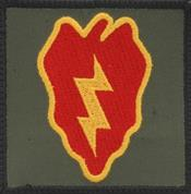 BAGP15 Tropic Lightning Patch (for Army Kit Bag)