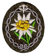 Edelweiss Gebirgsjager Arm Patch