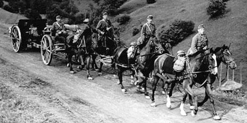Hungarian Horse Artillery