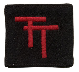 50th Division patch
