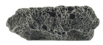 Asteroids (BB558)