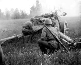 PaK40 in action