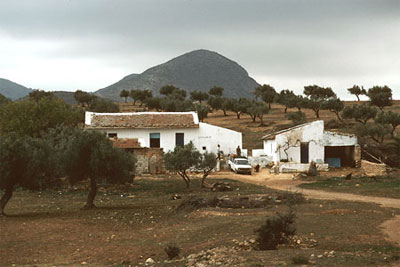 A Typical Tunisian Farm Today