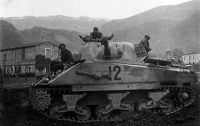 NZ Sherman near the Alps
