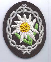 Edelweiss flower badge found on the upper right arm of Gebirgsjager tunics