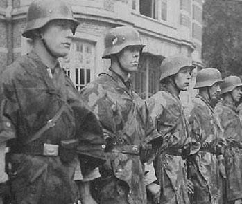 Luftwaffe Field Trooper on parade
