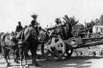 German horses rest by a 150mm Howitzer