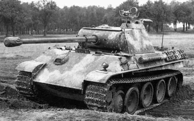 Hinterhalt: The Art of Panther Camouflage