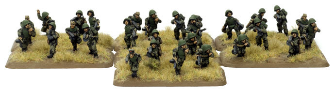 Engineer-Sapper Platoon (SU803)
