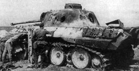 A knocked out Panther D