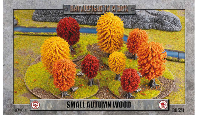Small Autumn Wood (BB551)