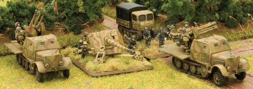 SS Anti-aircraft Gun Platoon and Artillery Anti-tank Gun Platoon