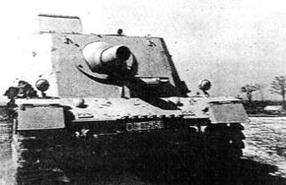 Brummbär (Early)